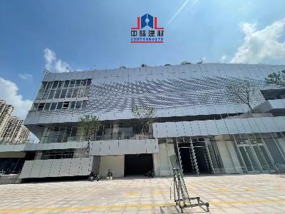 氟碳平板铝单板和造型冲孔铝单板相辉映的幕墙铝板